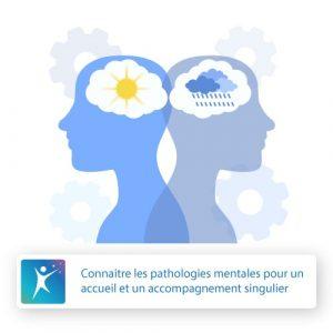 Affect-Formation-France-Association-Connaitre-les-pathologies-mentales-pour-un-accueil-et-un-accompagnement-singulier-formation-continue